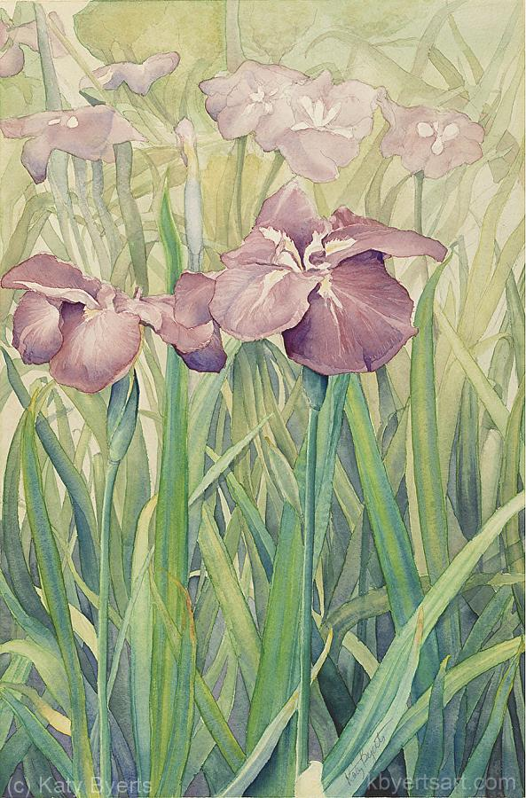 Katy Byerts Spring Iris watercolor in mauves and greens of iris in a field